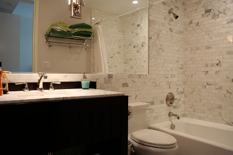 Complete Condo Renovation - Terra Builders